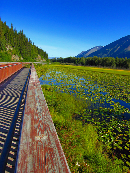 """Lily Pad Pond"" - Just a few miles past Moose Pass on Seward Highway... a lovely stroll on the boardwalk overlooking the grandiose mountain ranges of Chugach National Forest..."