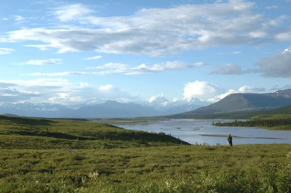 McClaren River Denali Highway