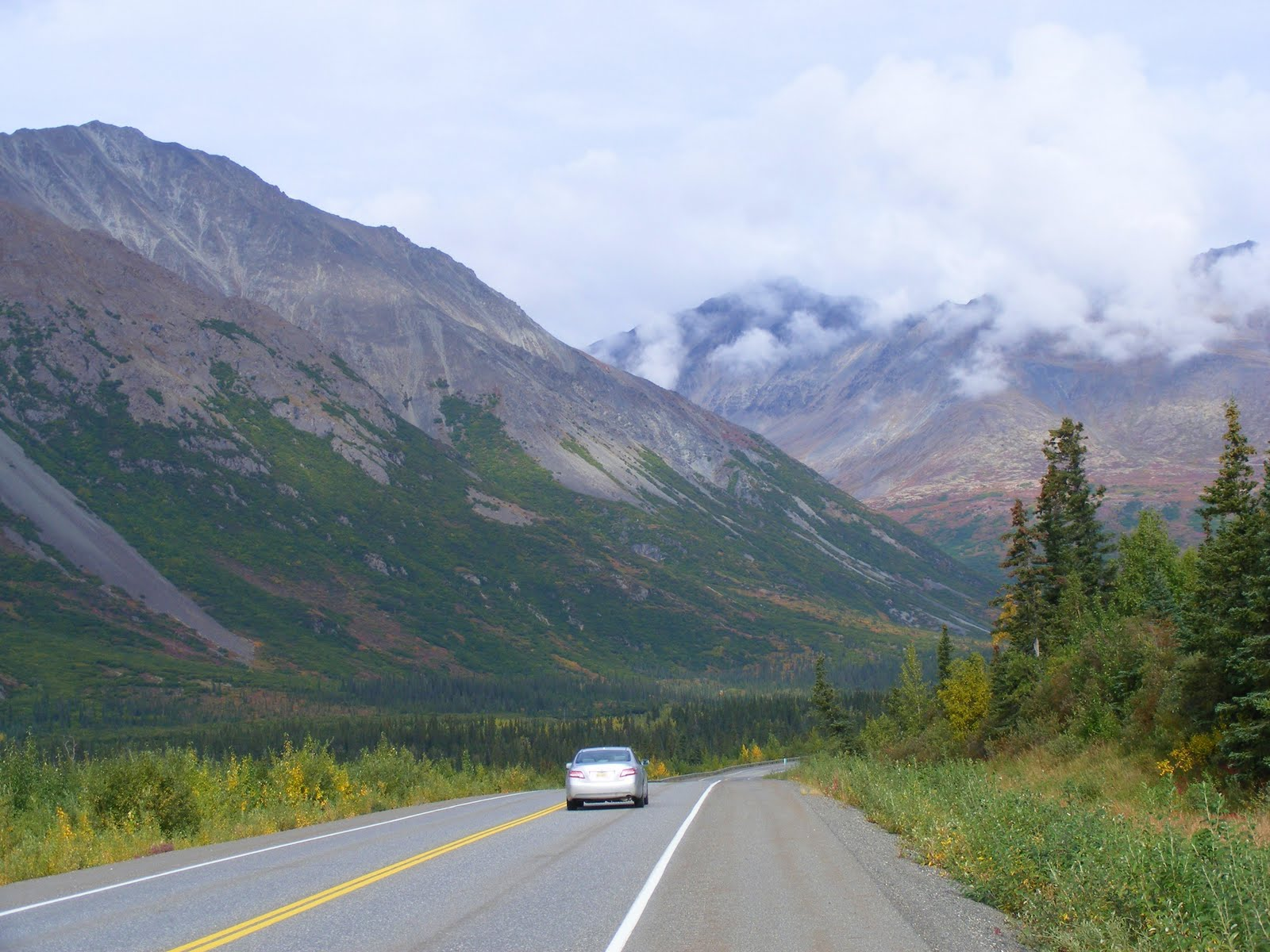 Less than an hour outside Fairbanks is the lush Tanana Valley State Forest, which surrounds George Parks Highway on both sides (Source: Justus Havelaar)