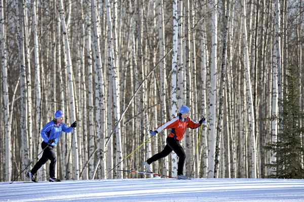 two cross country skiers on the snow with birch trees behind
