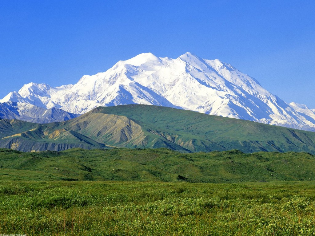 The peak of Denali juts out from behind the green foothills on a bright summer day