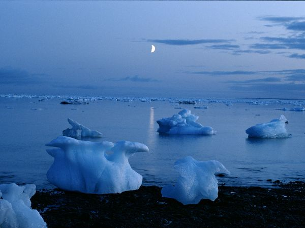 Icebergs dotting a bay with some washed ashore, all in twilight and a bright half moon above