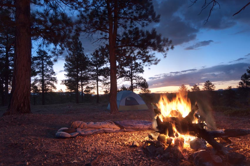 camp fire in front of a tent in the woods