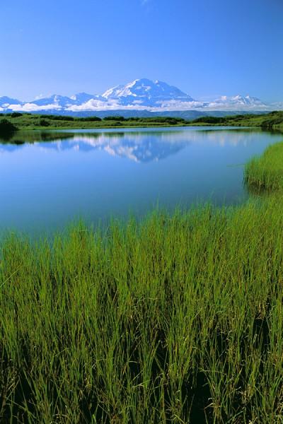 Alaska in the Spring