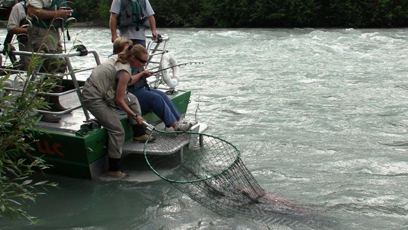 Fishing lodges alaska for Fishing jet boat