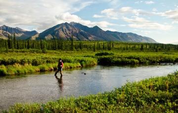 Fishing for Arctic Grayline