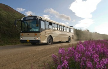 Tundra Wilderness Tour