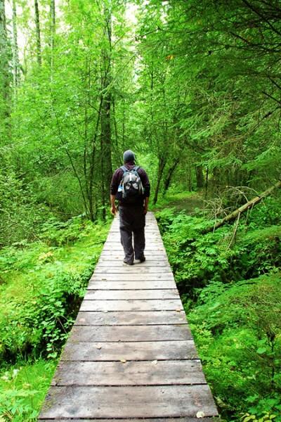 Kenai Nature Hike