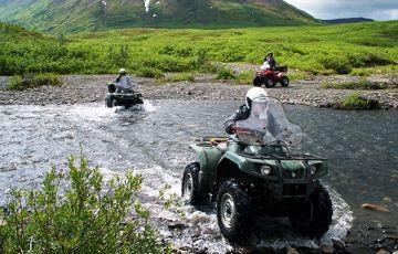 Mt McKinley Black Bear ATV Adventures
