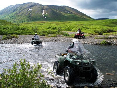 Mt McKinley Black Bear ATV Adventures