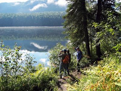 Mt. McKinley Byers Lake Nature Walk