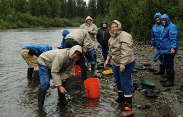 McKinley Wilderness gold Panning Adventure