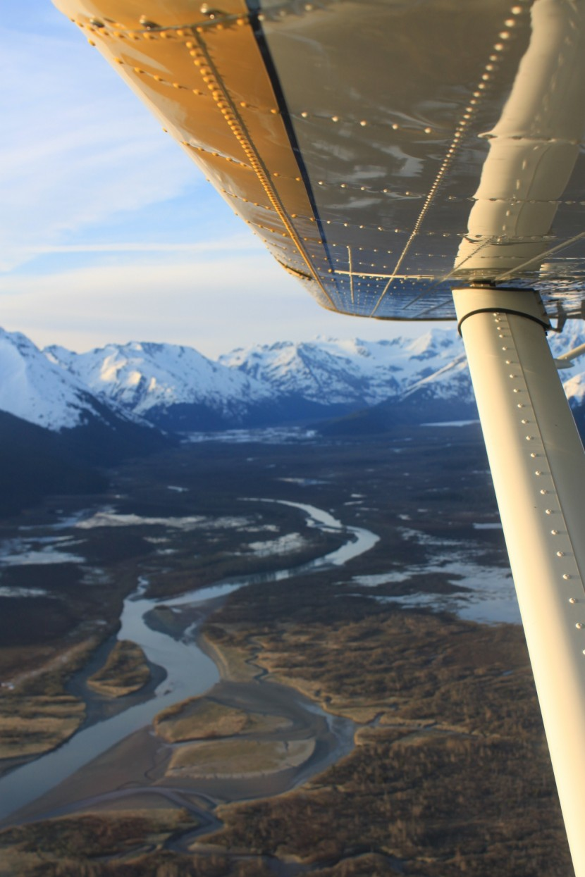 Take Flight in Denali National Park with Princess Lodges