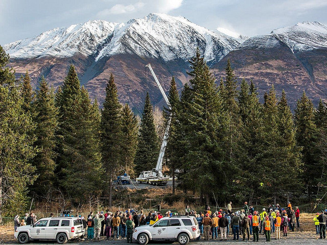 The USDA cuts down a tree in Alaska to be used for Christmas in the nation's capitol.