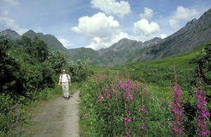 Recreation and Adventure Abound in Denali State Park
