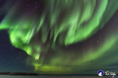 Glimmering green skies of the aurora