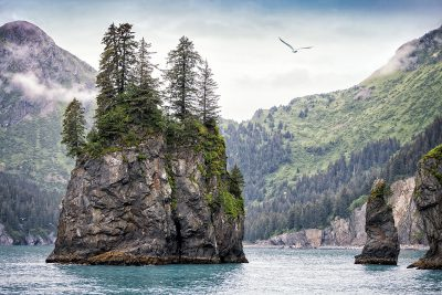 Small, rocky islands in Kenai Fjords National Park