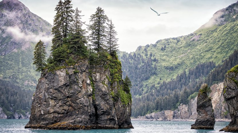 Kenai Fjords National Park features stunning coastline and nearly 40 glaciers.