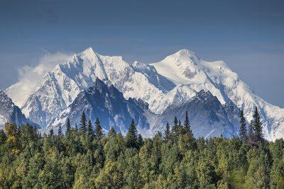 Stunning peaks of the Alaska range jutting out above trees