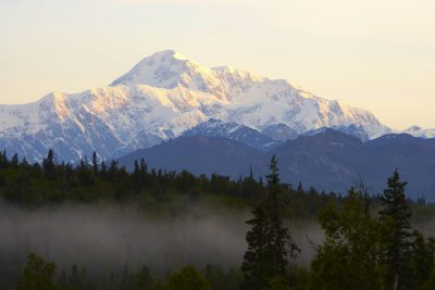 Stunning Denali with trees and fog in the foreground