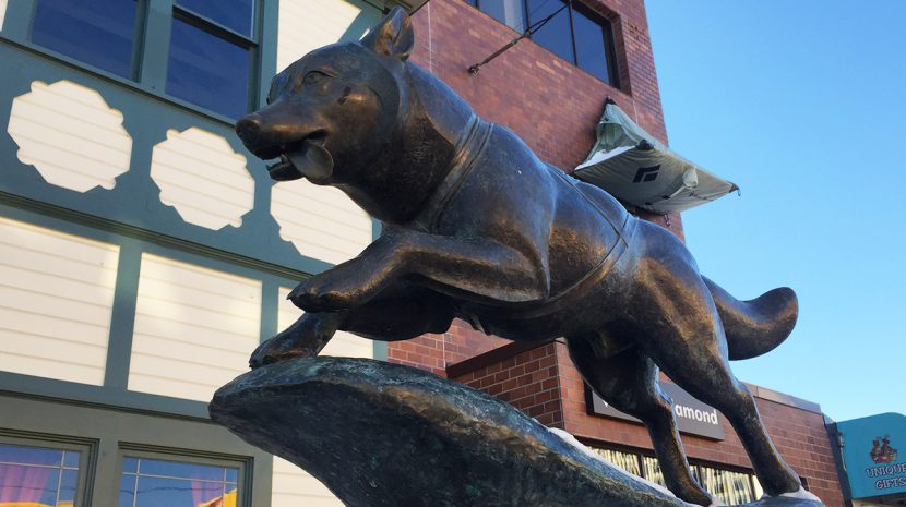 The Balto statue in downtown Anchorage