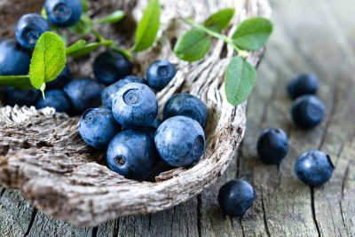 Fresh summer blueberries